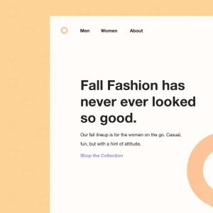 Fall Fashion website look